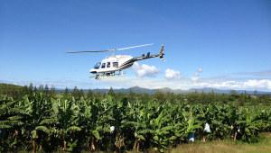 banana-spraying-helicopter